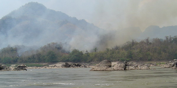 slash and burn along the Mekong