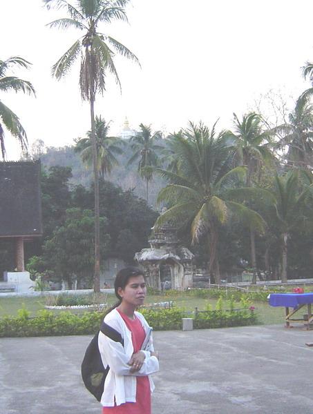 looking back at Phu Si